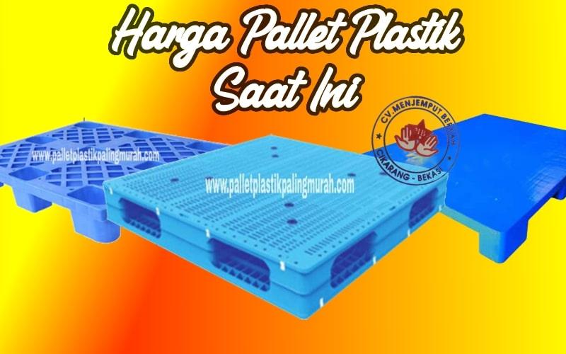 Harga Pallet Plastik Saat Ini